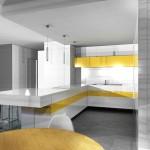 cuisine-particuliers-projet-01