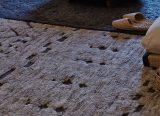 Tapis Berber - Berber rug - Tapis design GAN - gan Rugs - tapis gan - GAN - LVC Design