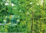 Tropicalia - Patricia Urquiola - 2008 - Moroso - LVC Design